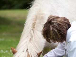 Equine Therapy | Addiction Treatment